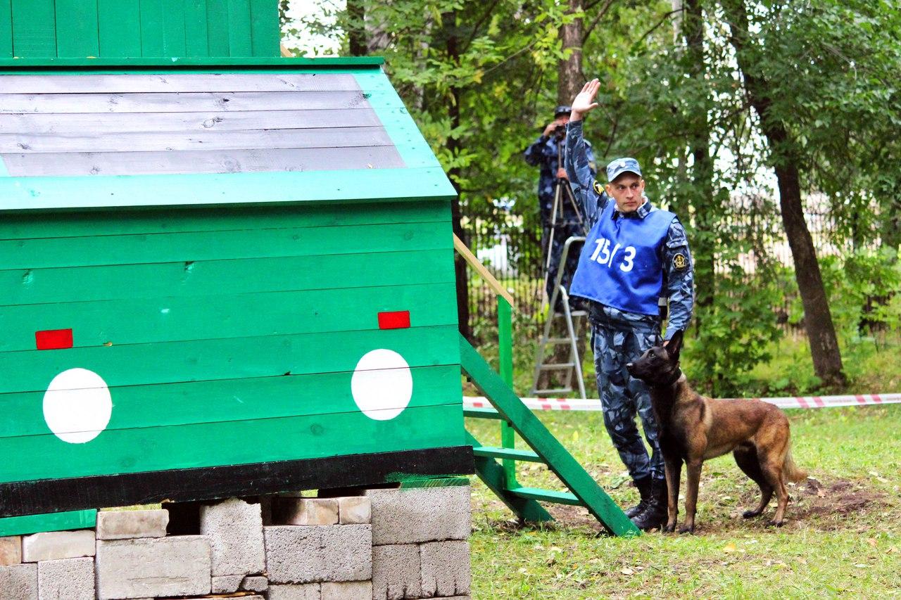 Фигурант Дмитрий Коновалов услуги для собак